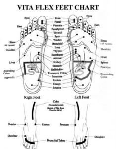 Click to download vita flex pdf foot chart also rh natural aromatherapy benefits
