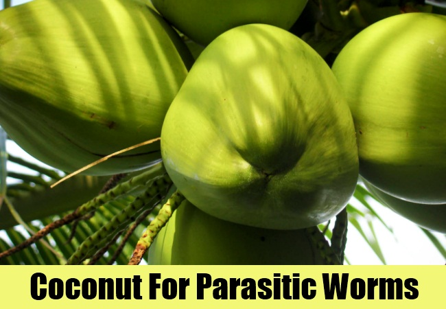 Coconut For Parasitic Worms