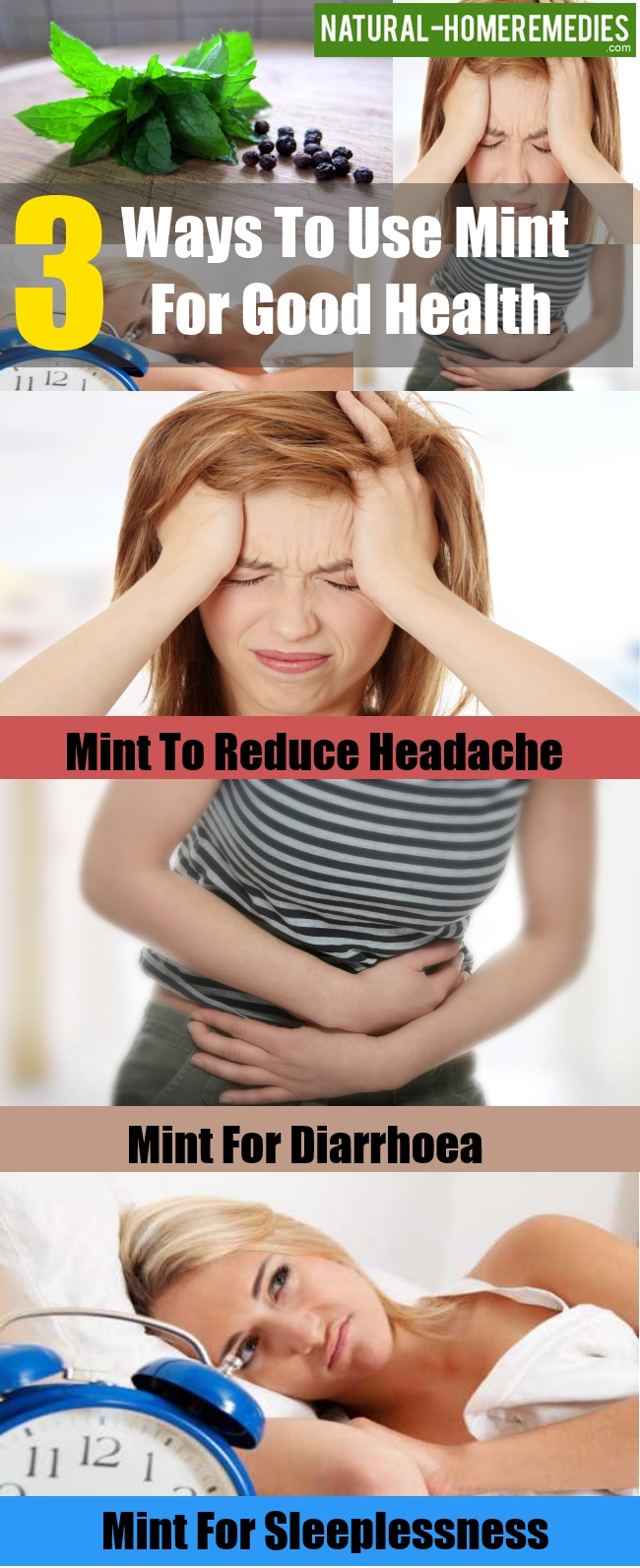 Ways To Use Mint For Good Health