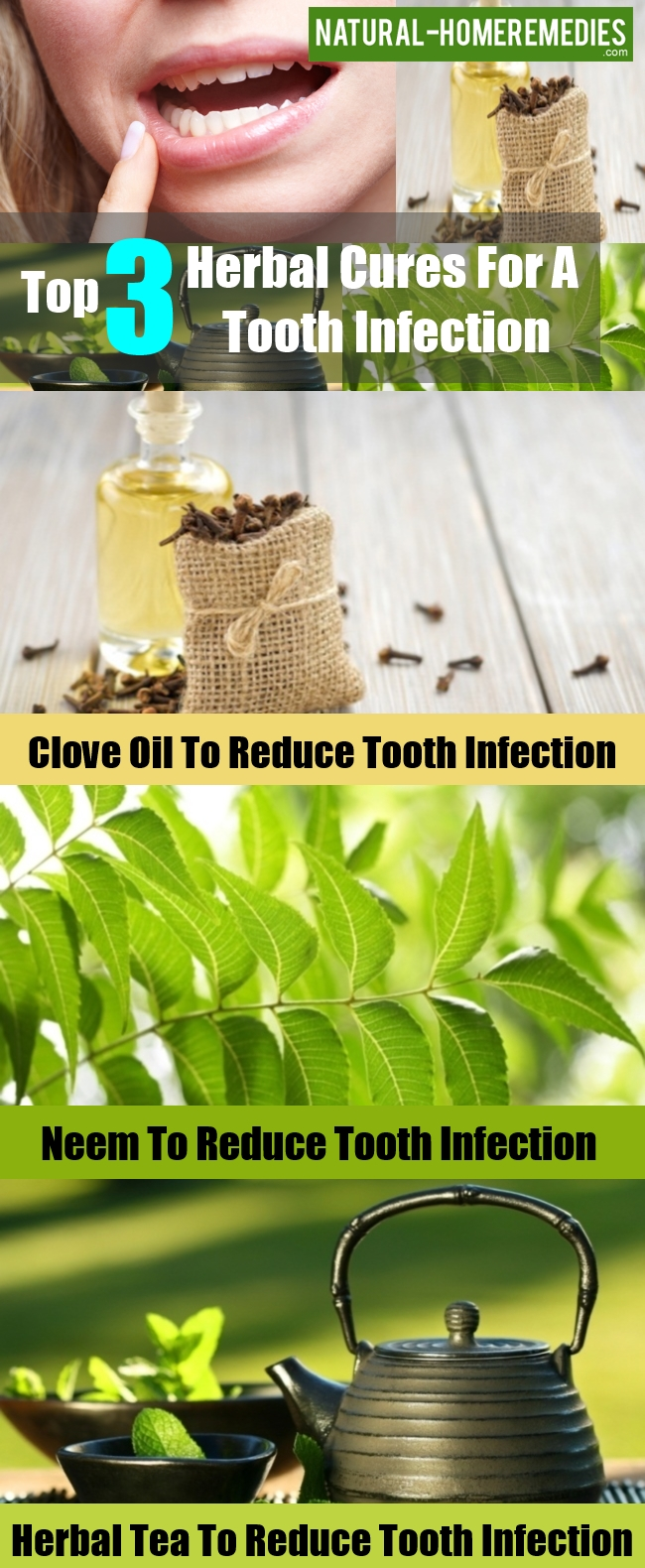 Herbal Cures For A Tooth Infection