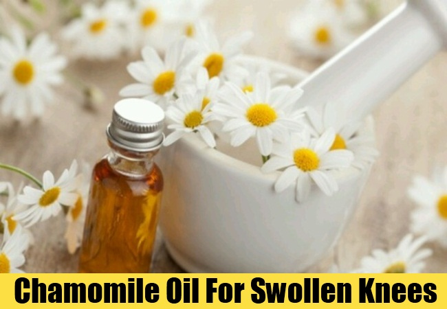 Chamomile Oil For Swollen Knees
