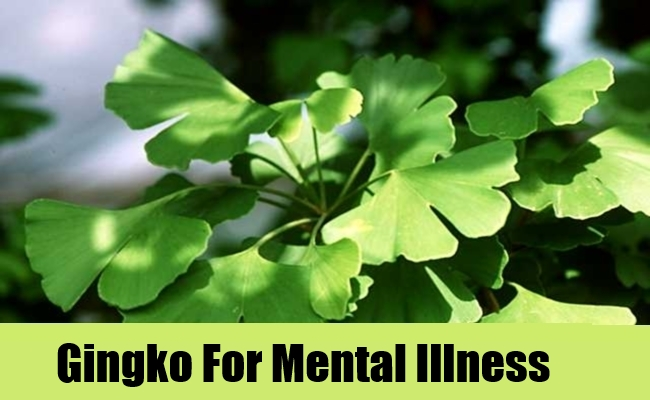 Gingko For Mental Illness