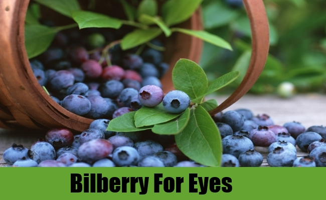 Bilberry For Eyes