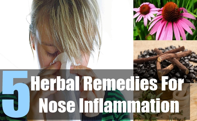 5 Herbal Remedies For Nose Inflammation