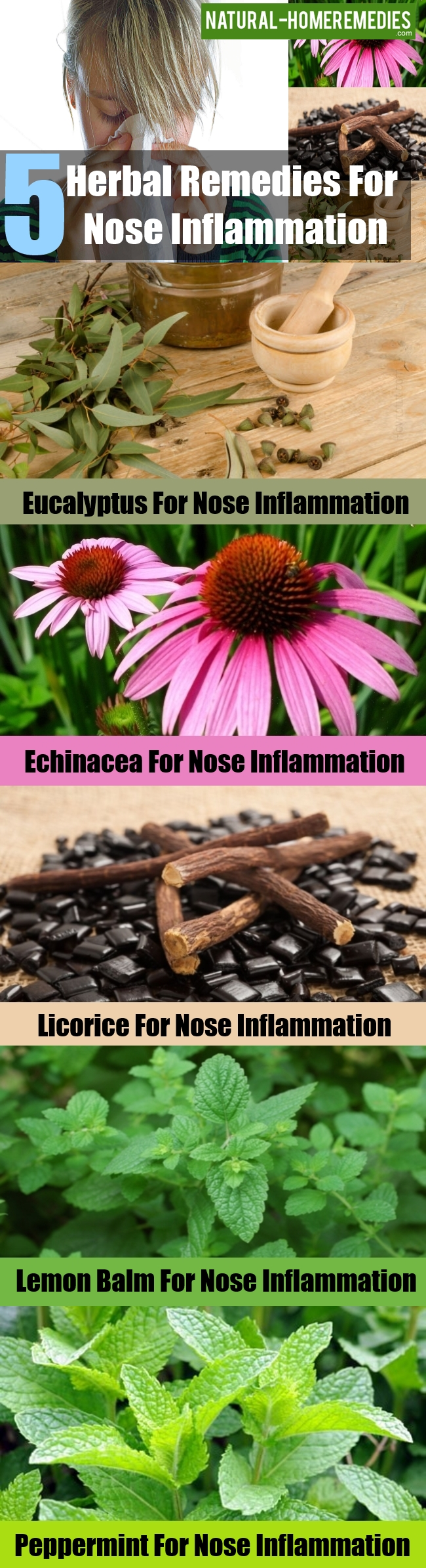 Herbal Remedies For Nose Inflammation