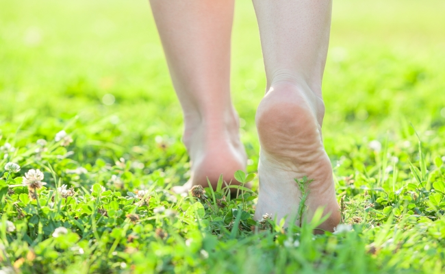 Walk on Grass Barefoot