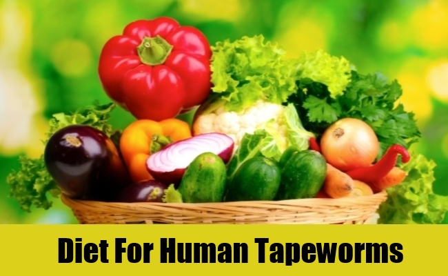 Diet For Human Tapeworms