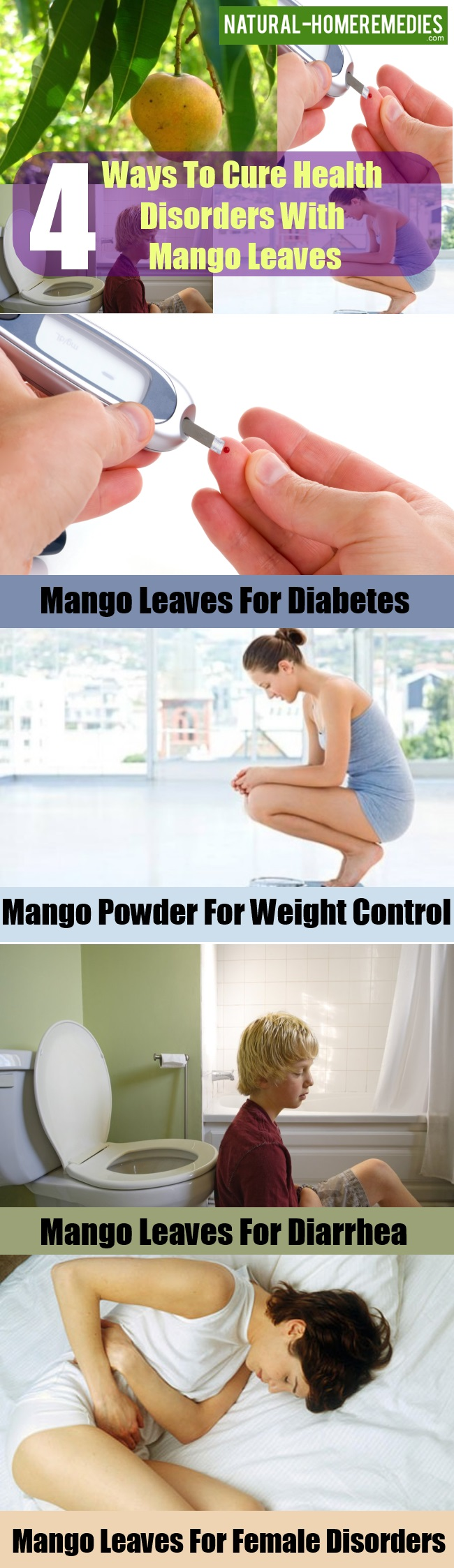 Ways To Cure Health Disorders With Mango Leaves