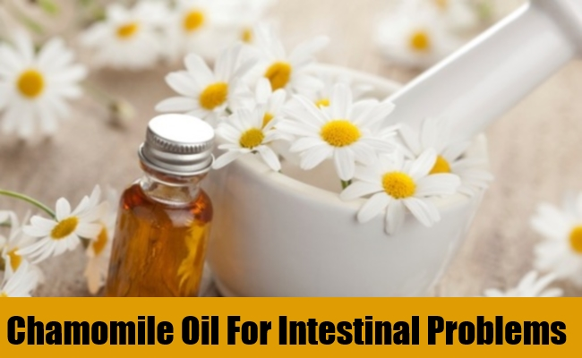 Chamomile Oil For Intestinal Problems