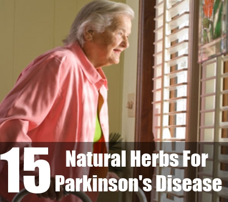 15 Natural Herbs For Parkinson's Disease