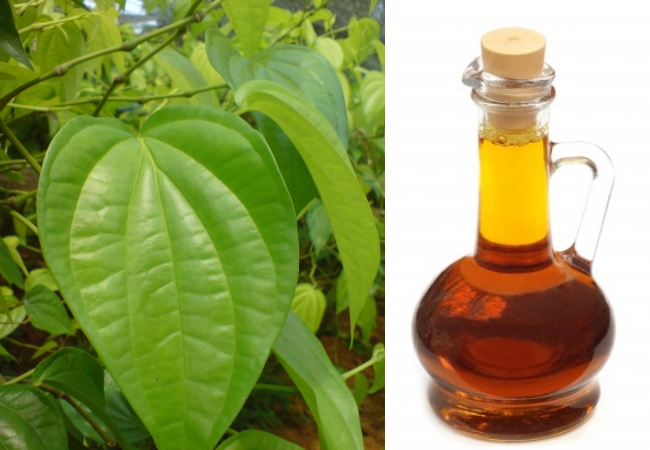 Betel Leaves And Mustard Oil