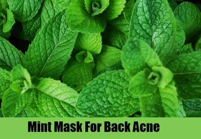 Mint Mask For Back Acne
