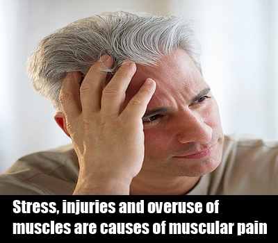 cause of muscular pain