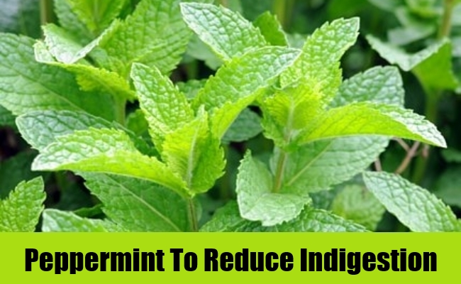 Peppermint To Reduce Indigestion