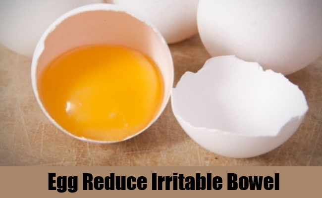 Egg Reduce Irritable Bowel
