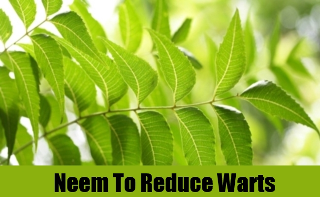 Neem To Reduce Warts