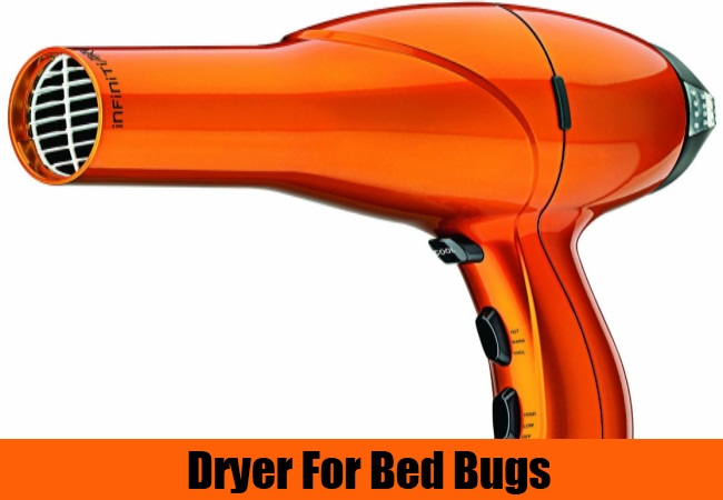 Dryer For Bed Bugs