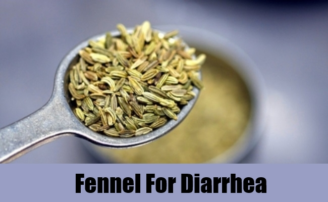 Fennel For Diarrhea