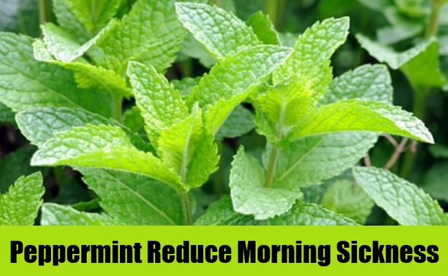 Peppermint Reduce Morning Sickness