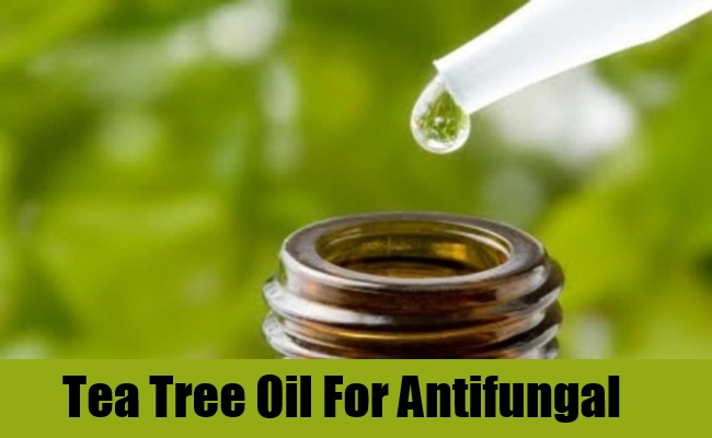 Tea Tree Oil For Antifungal
