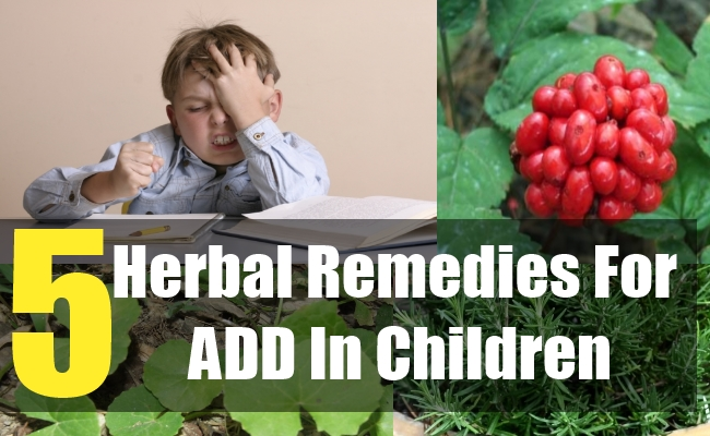 5 Herbal Remedies For ADD In Children
