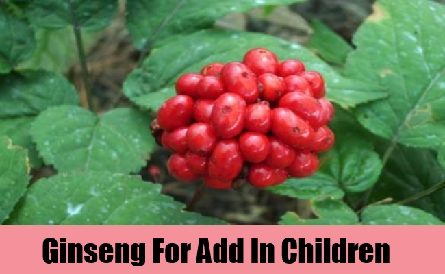 Ginseng For Add In Children