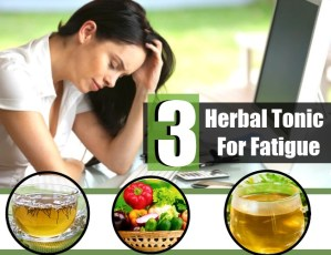 Herbal Tonic For Fatigue