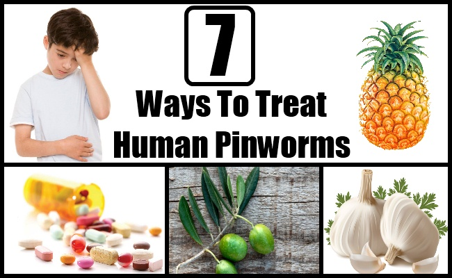 How To Treat Worms In Toddlers Naturally