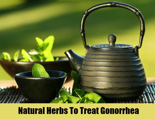 Natural Herbs To Treat Gonorrhea
