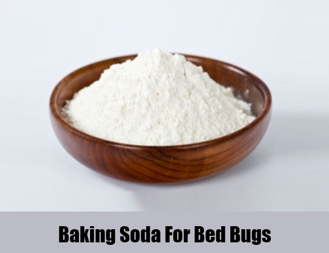 Baking Soda For Bed Bugs