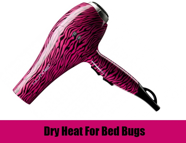 Dry Heat For Bed Bugs