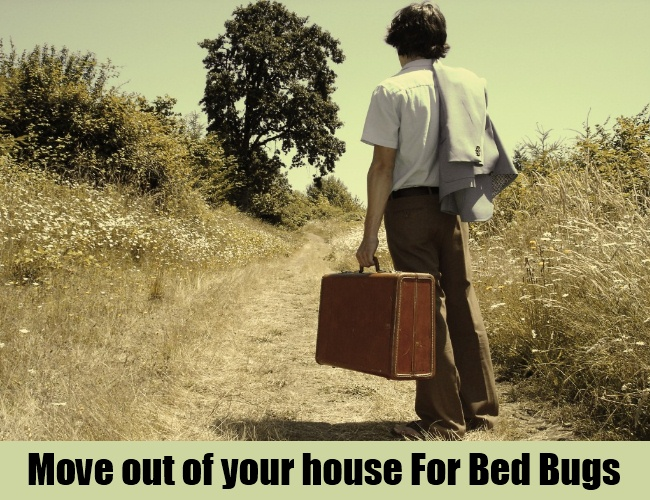 Move out of your house For Bed Bugs