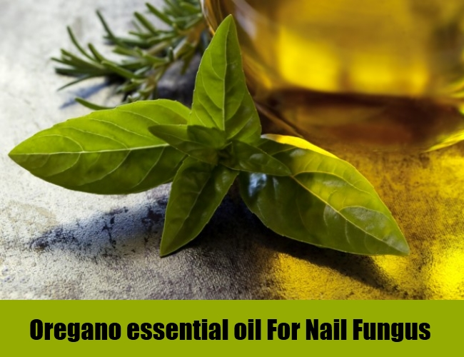 Oregano essential oil For Nail Fungus
