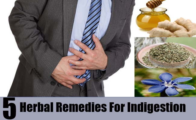 Herbal Remedies For Indigestion