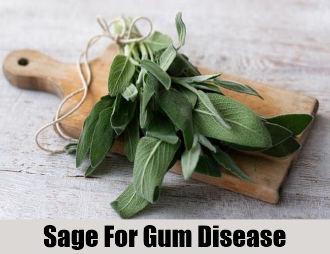 Sage For Gum Disease