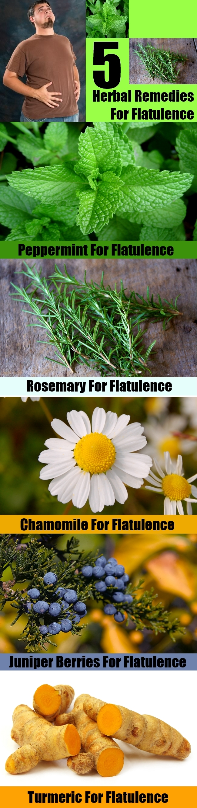 5 Best Herbal Remedies For Flatulence