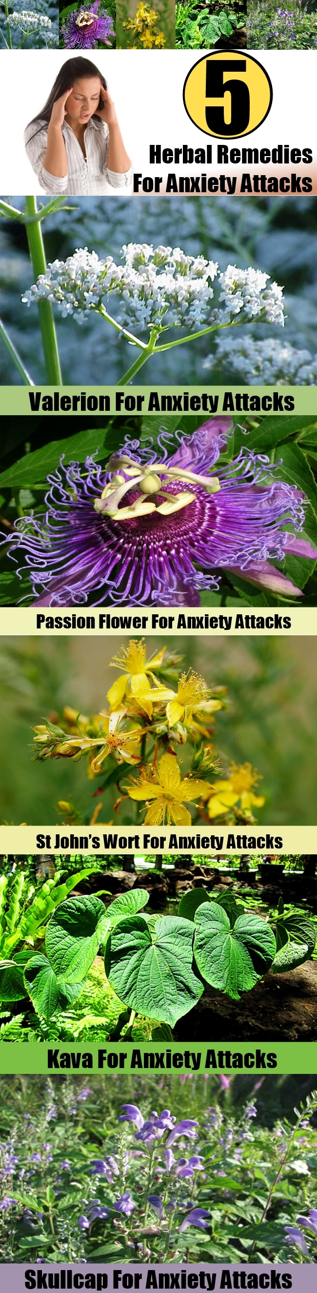5 Powerful Herbal Remedies For Anxiety Attacks