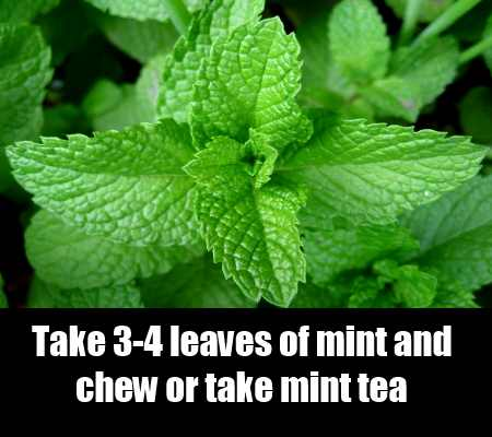 Refresh With Peppermint