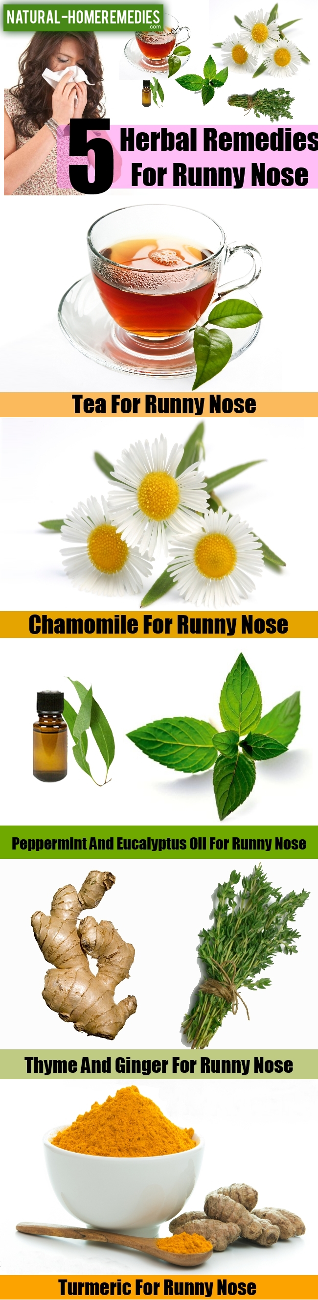 Top 5 Herbal Remedies For Runny Nose
