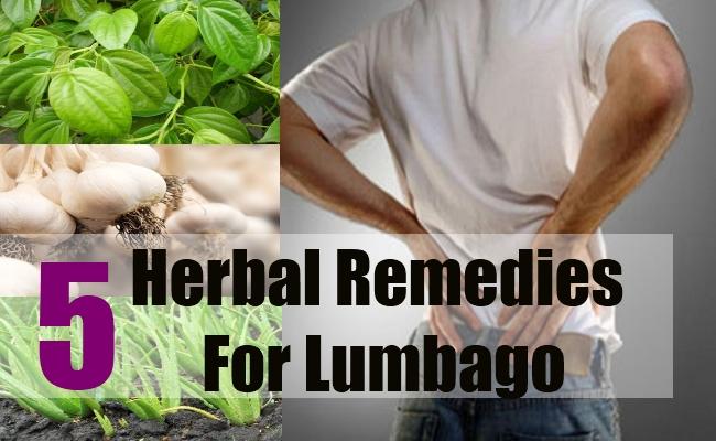 5 Herbal Remedies For Lumbago