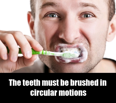 Proper Movement Of The Toothbrush