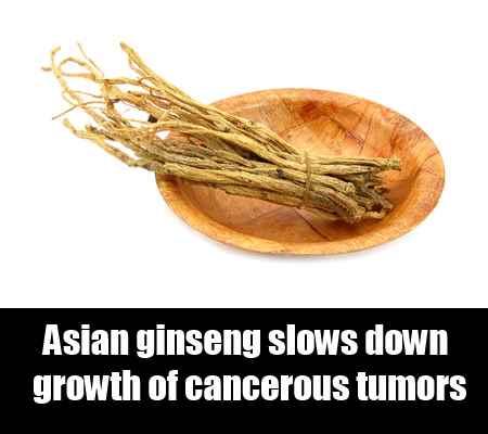 Asian Ginseng