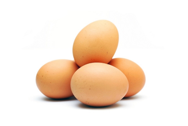 Egg Protein Pack