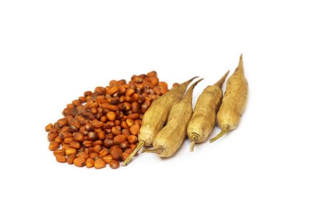 Radish Seeds Paste