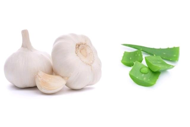 garlic and aloe vera mask
