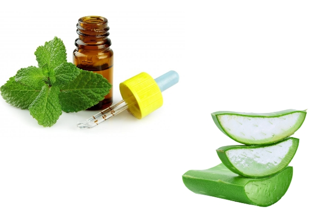 Aloe Vera Gel With Peppermint Oil