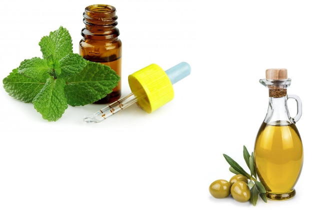 Olive Oil And Peppermint Oil