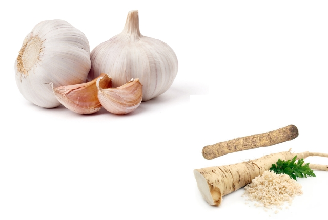 Garlic And Horseradish