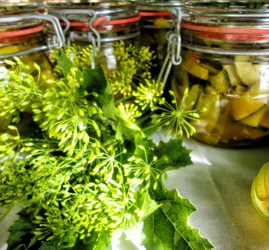 Kombucha Essig selber machen - mit einem leckeren Rezept für eingelegte Zucchini - fertige Gläser
