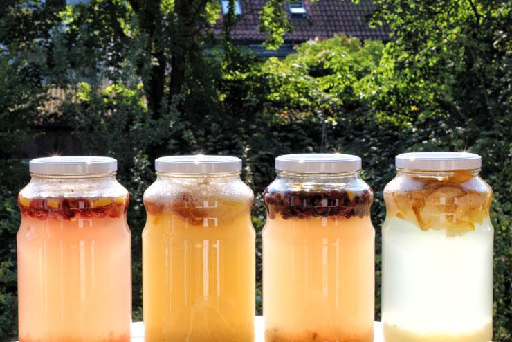 selfmade water kefir - water kefir recipes